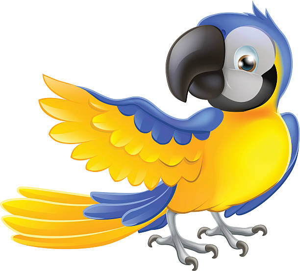 Cartoon Of A Blue And Yellow Macaw Clip Art, Vector Images.