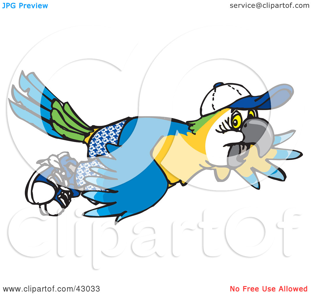 Clipart Illustration of a Blue And Yellow Macaw Flying In Shorts.