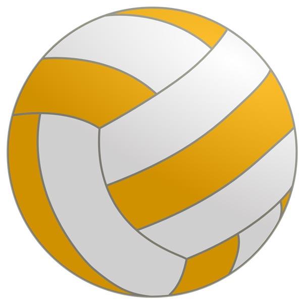 clip art: netball..