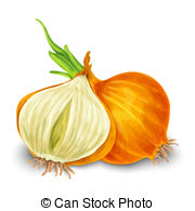 Onion Clip Art Vector and Illustration. 126,422 Onion clipart.