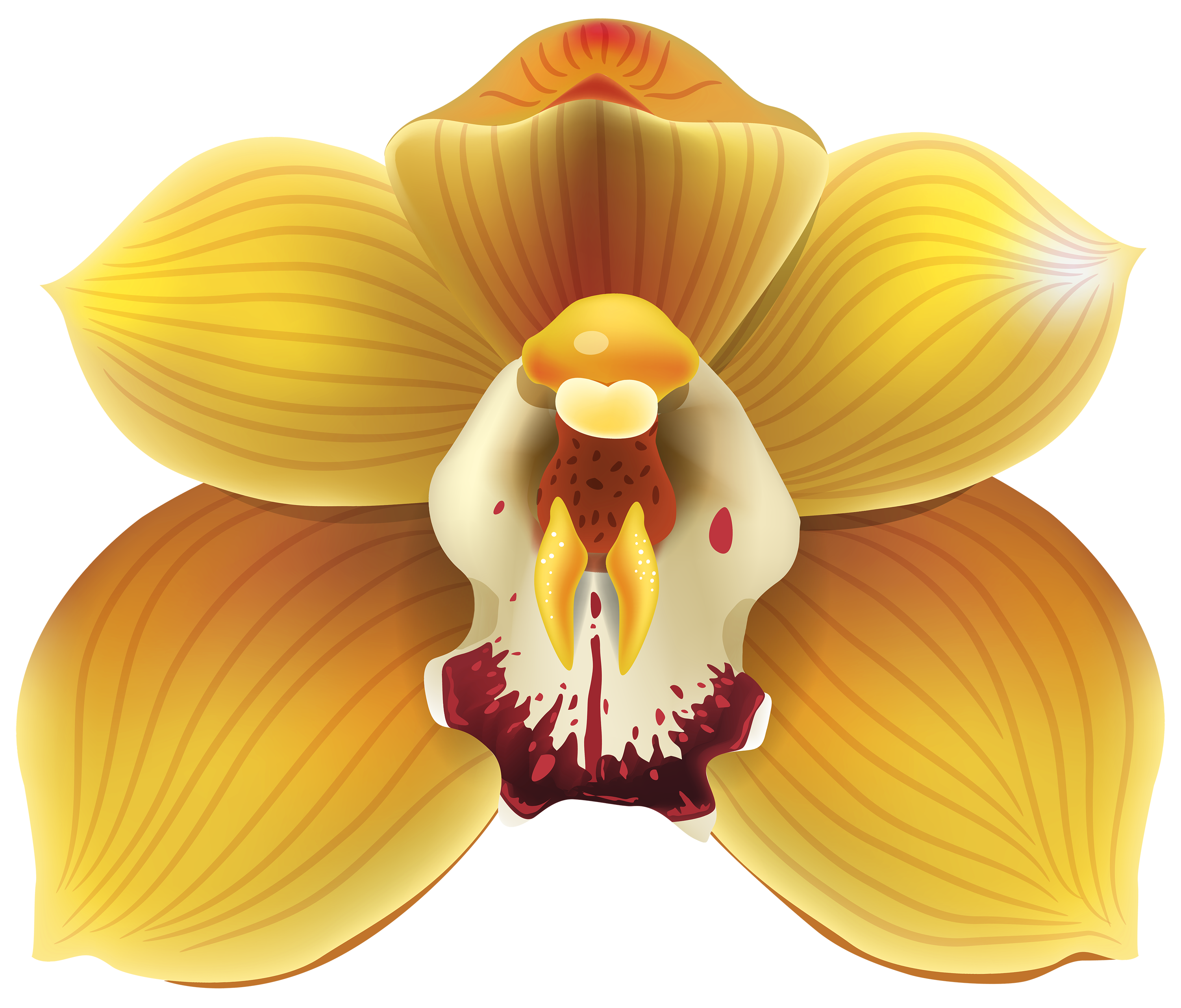 Yellow Orchid PNG Clipart.