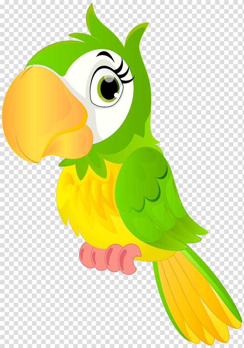 Green and yellow parrot illustration, Parrot Bird , Parrot.