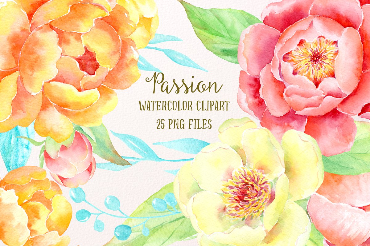 Watercolor Clipart Peony Passion ~ Illustrations ~ Creative.