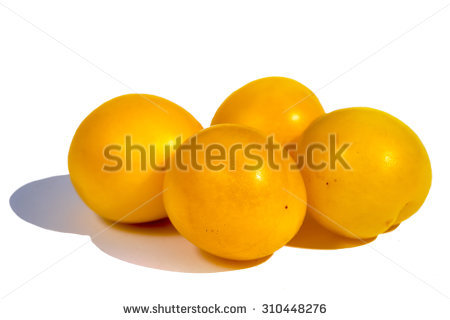 Yellow Plum Stock Photos, Royalty.