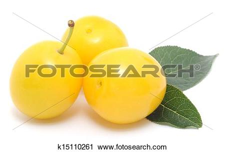 Stock Photography of yellow plums k15110261.