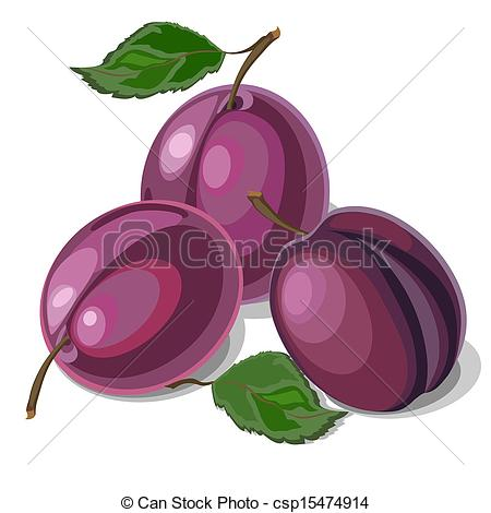 Images: Plums Clipart.