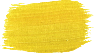 11 Yellow Paint Brush Strokes (PNG Transparent).