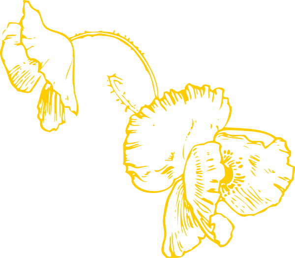 Yellow Poppy Hanging Clip Art at Clker.com.