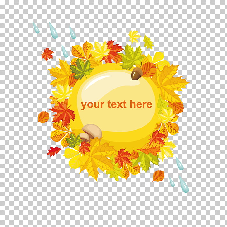 Autumn Photography , autumn leaves and raindrops PNG clipart.