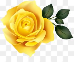 Rose Order png free download.