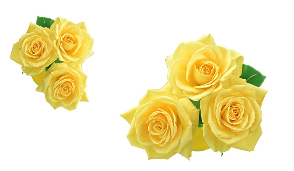 Rose Yellow Flower Clip art.