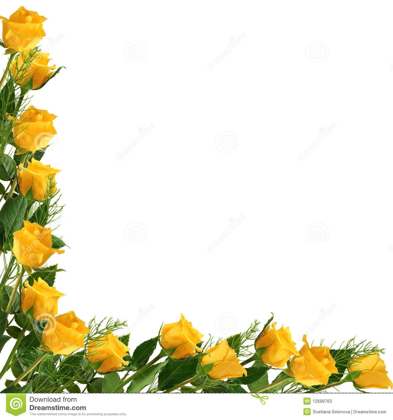 Yellow Rose And Gold Ribbon Border Royalty Free Stock Photography.