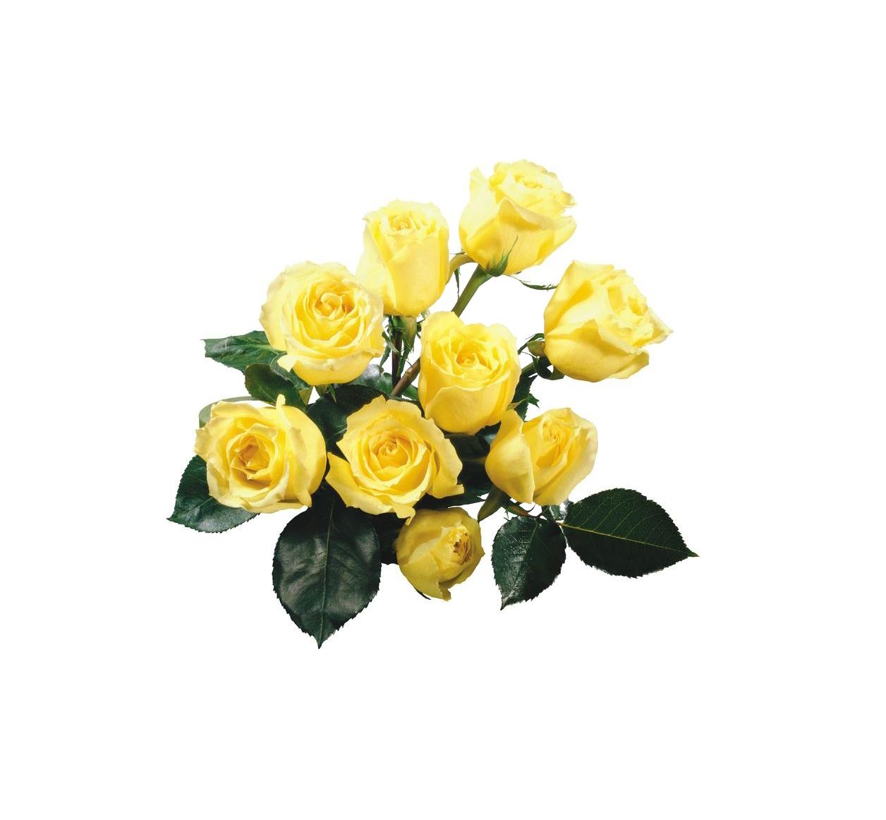 Rose Yellow Flower bouquet Wallpaper.