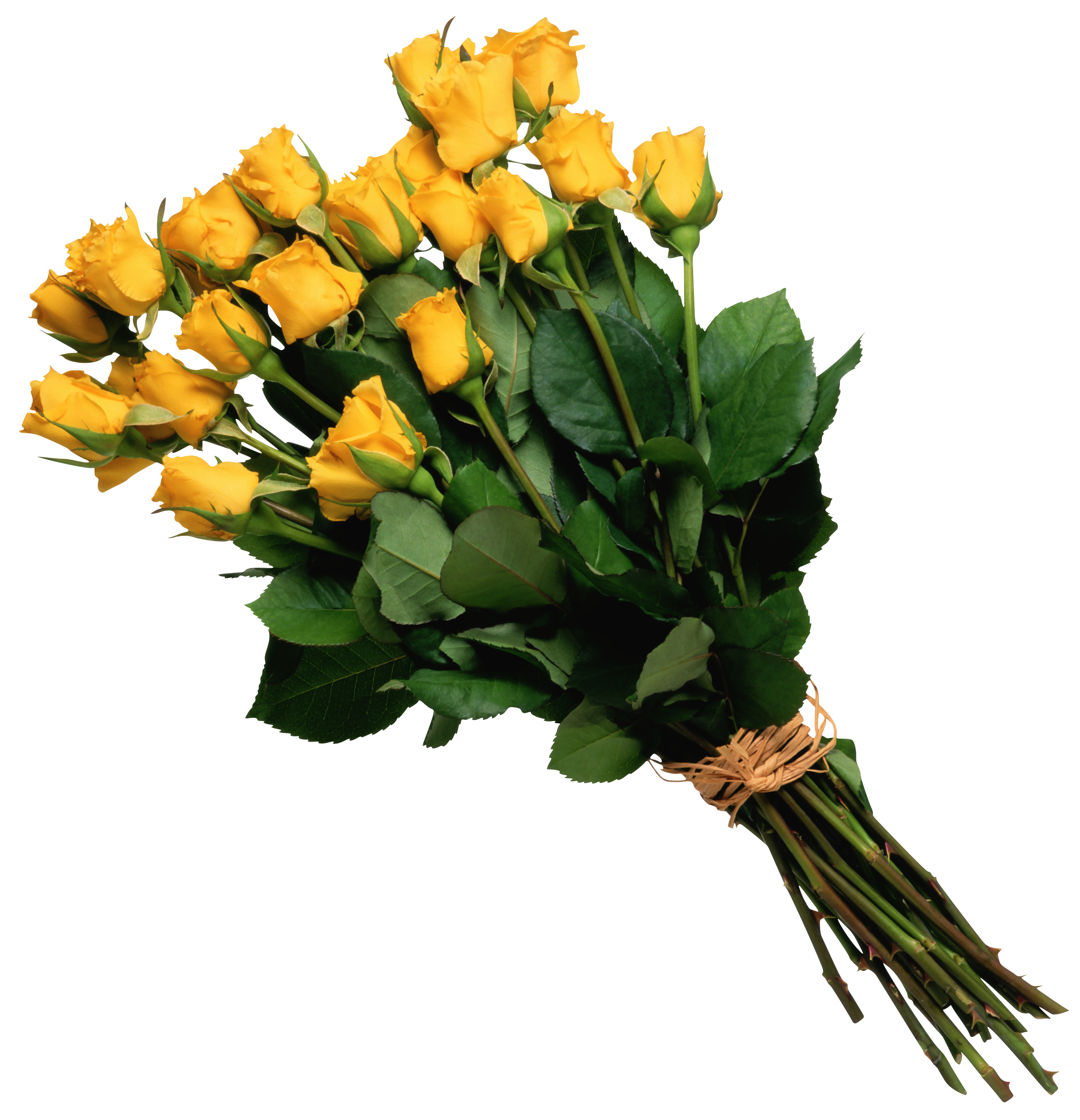 Yellow Rose Bouquet Clipart.
