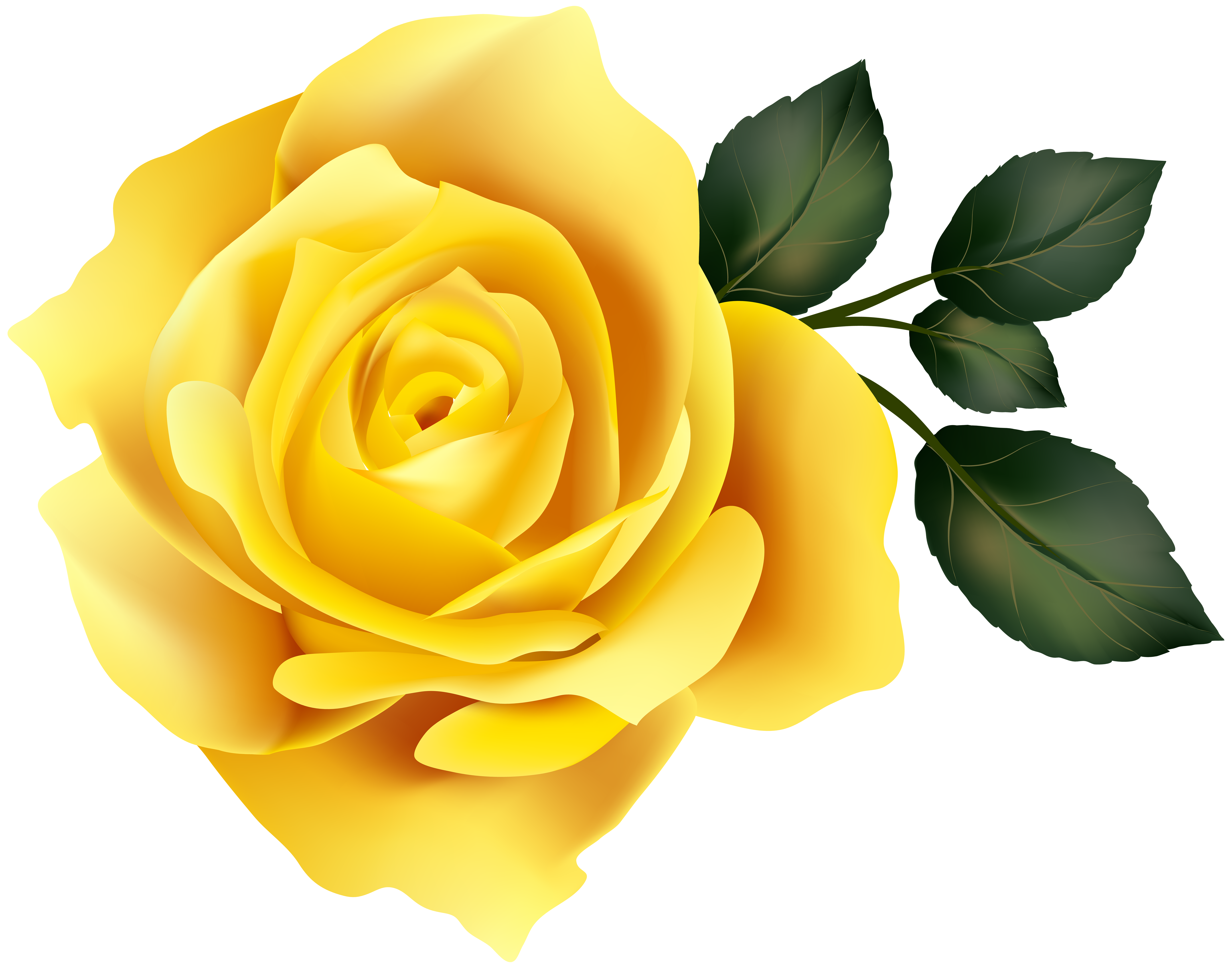 Yellow Rose Clip Art Image.