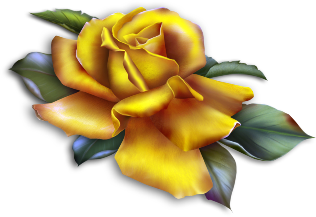 Beautiful_Yellow_Rose_Clipart.png?m=1358636400.