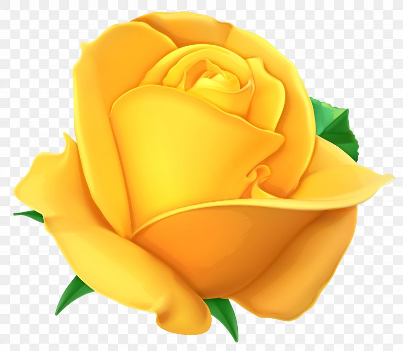 Rose Yellow Clip Art, PNG, 5382x4694px, Rose, Cdr, Close Up.
