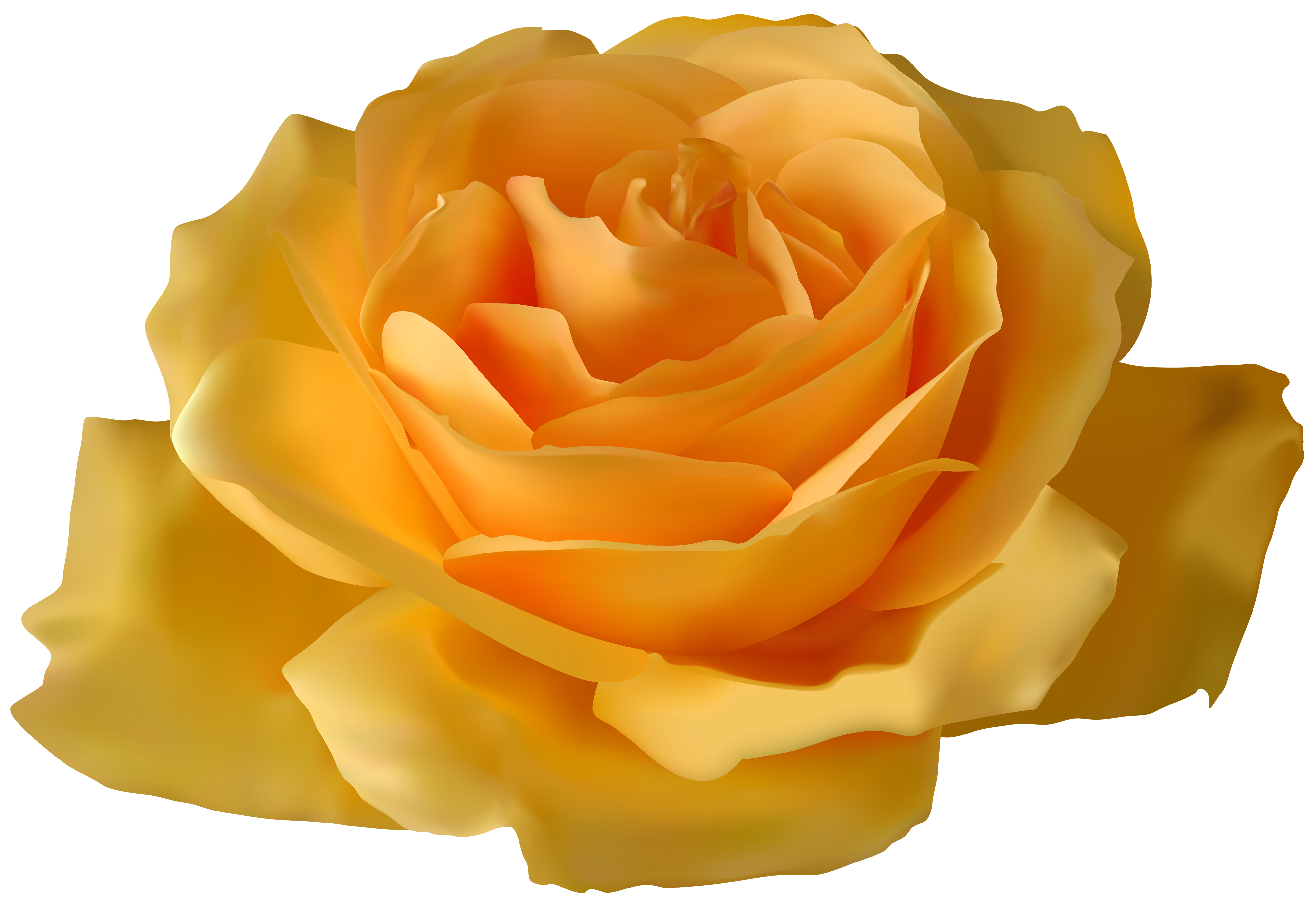 Yellow Rose PNG Clipart.