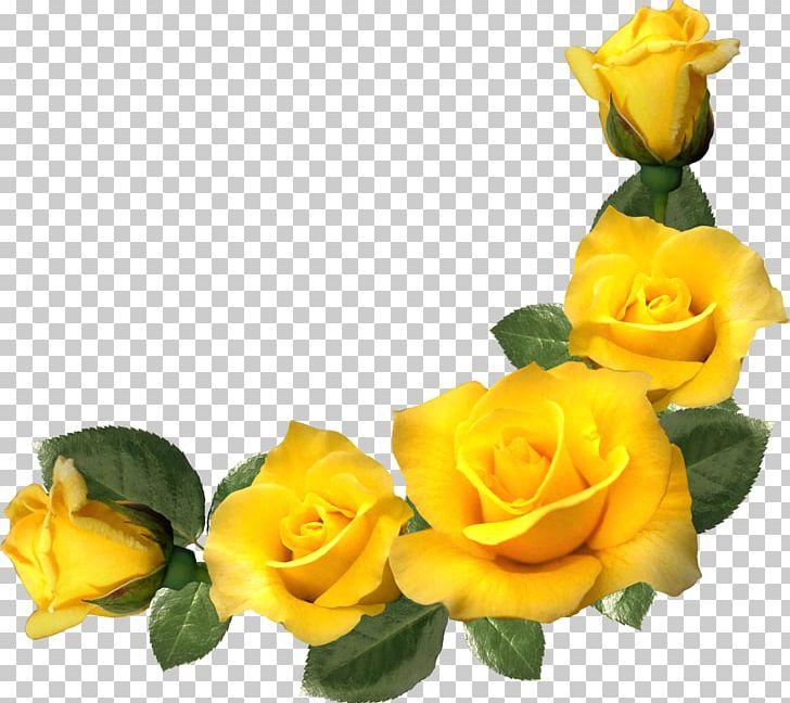 Frames Yellow Rose Flower PNG, Clipart, Blue, Clip Art.