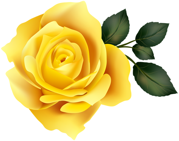 Clipart Yellow Rose.