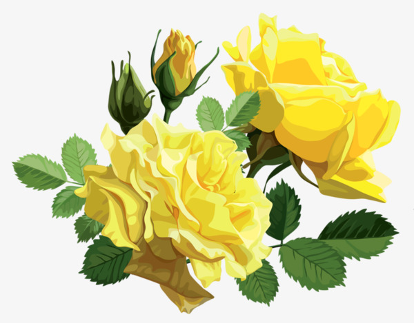 Yellow Rose Flower, Rose Clipart, Flower Clipart, Flowers PNG.