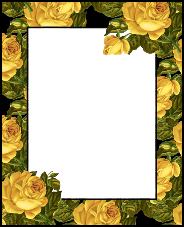 Transparent PNG Photo Frame with Yellow Roses.