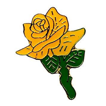 Yellow Rose Platonic Love Friendship Flower Badge Button Pin.