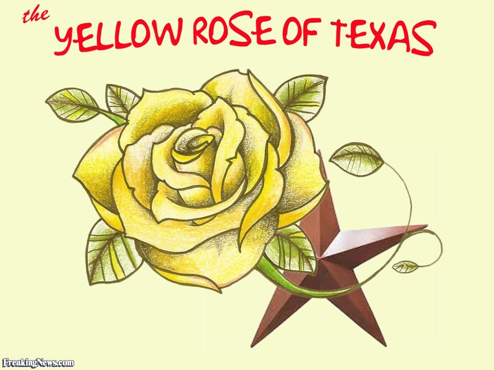 Yellow rose of texas clipart 4 » Clipart Portal.