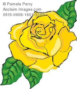 Yellow Rose Bloom with Green Leaves Royalty.