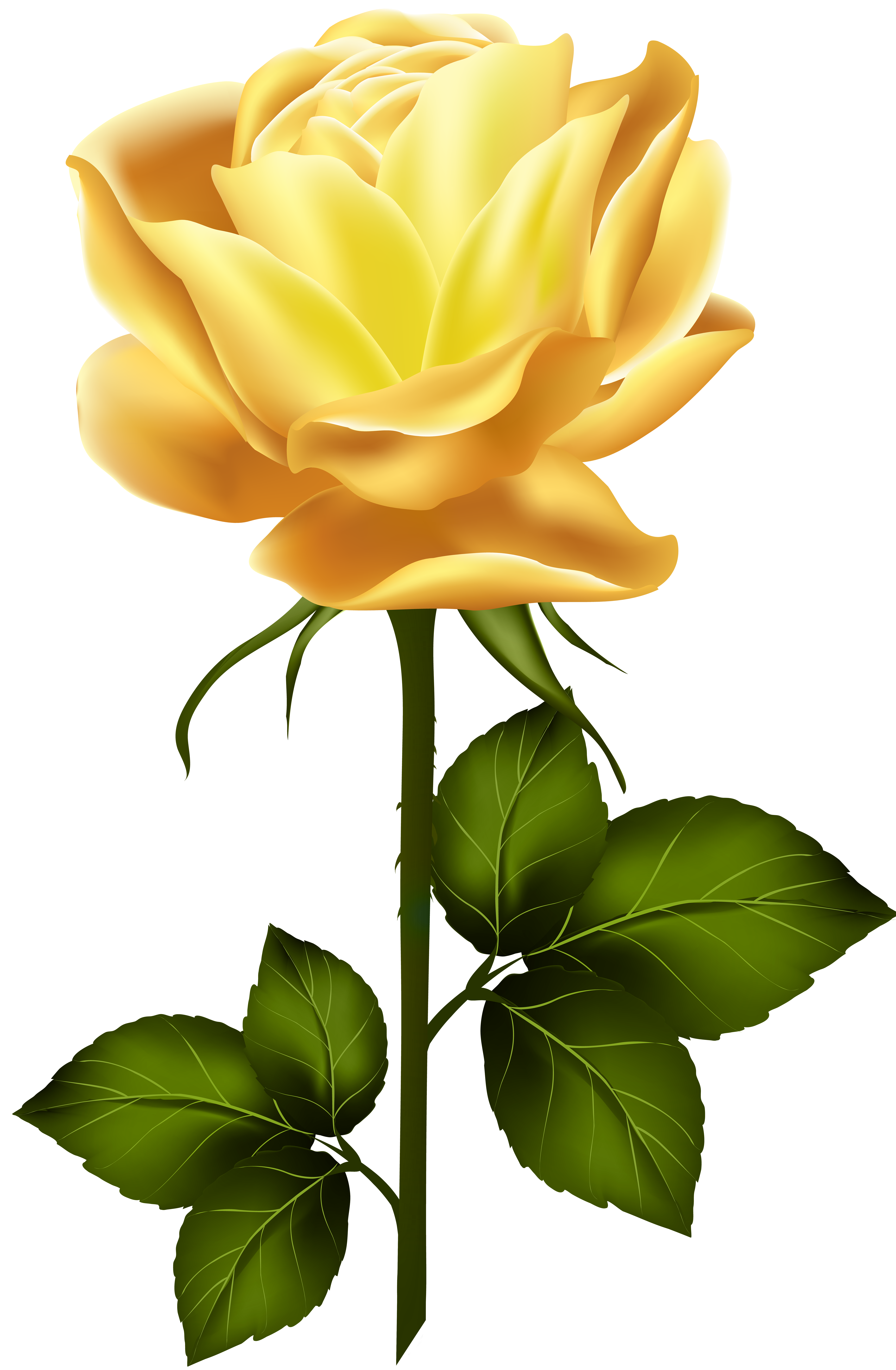 Yellow Rose with Stem PNG Clip Art.