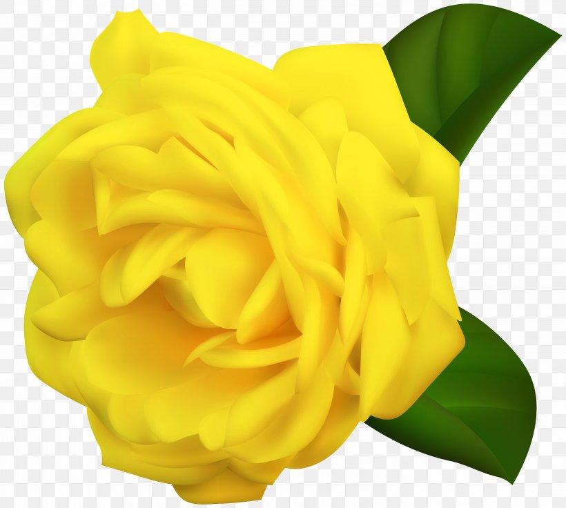 Rose Yellow Desktop Wallpaper Clip Art, PNG, 6000x5388px.