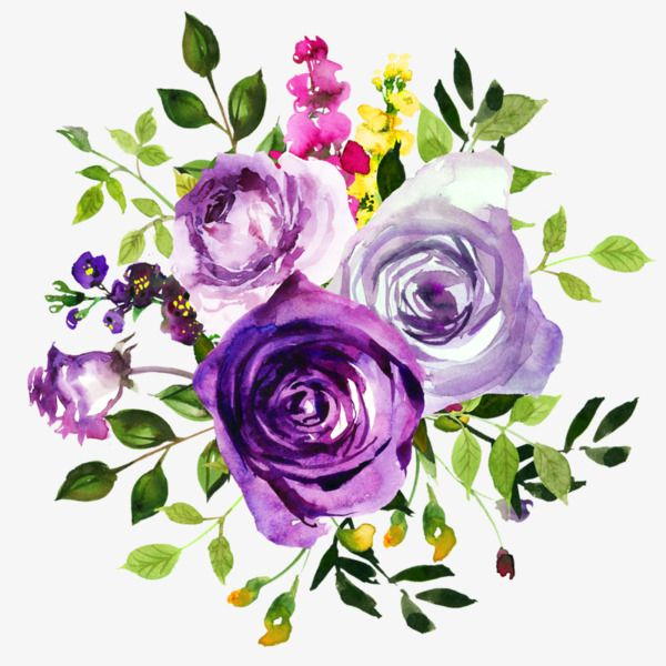 Purple Roses, Watercolor, Green Leaves, Yellow Flowers PNG.