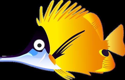 Yellow, Fish.