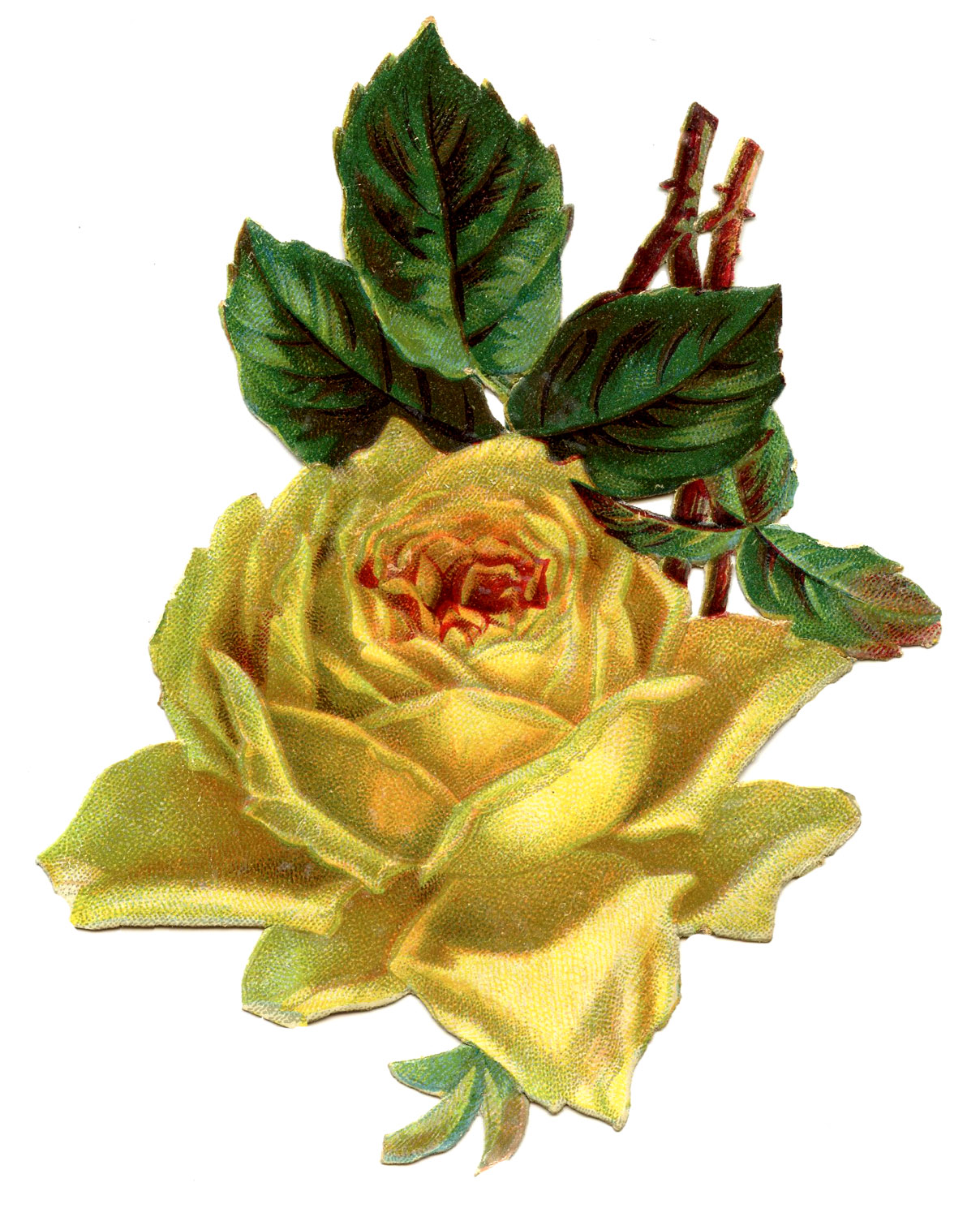 Vintage Yellow Flower Clipart.