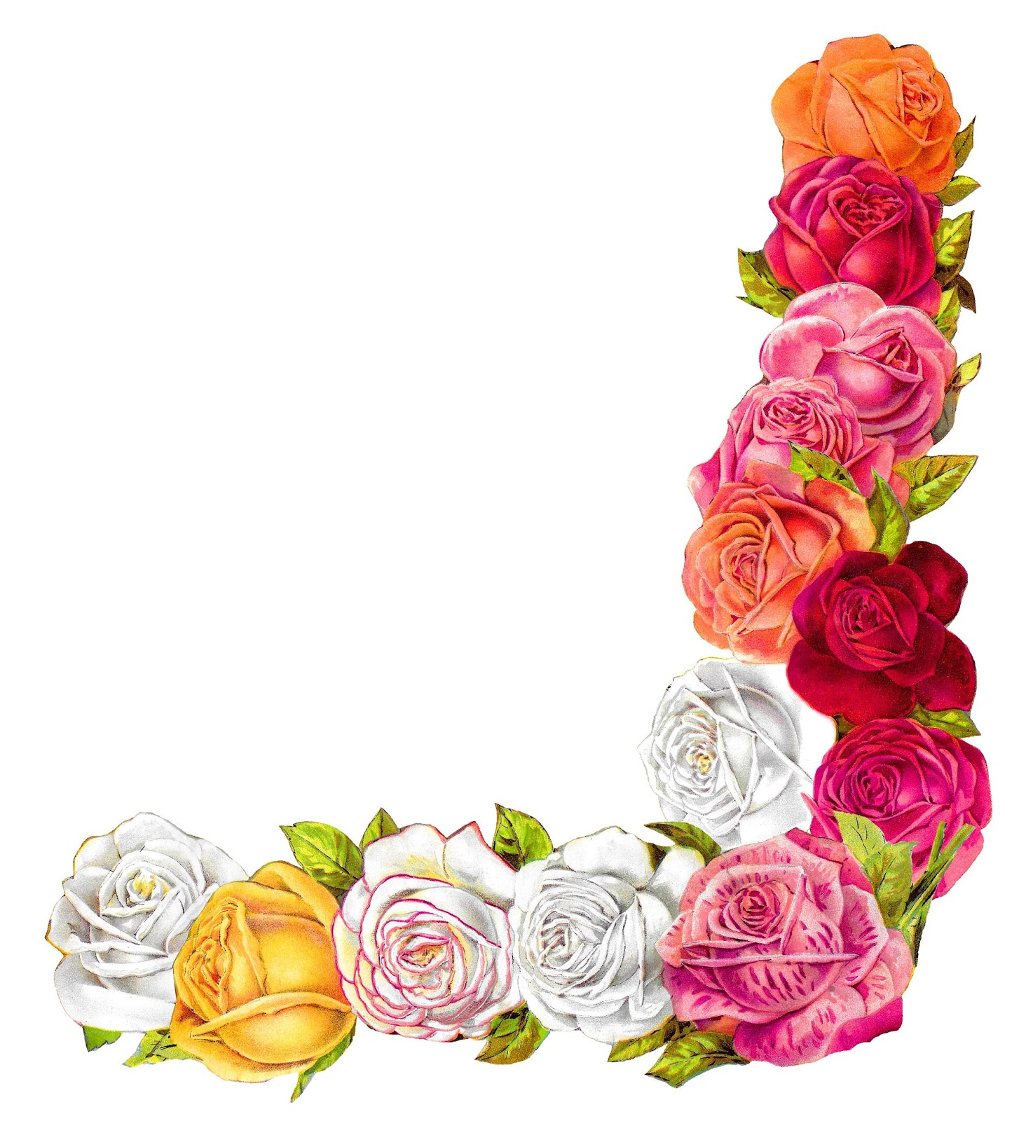 The Graphics Monarch: Digital Vintage Shabby Chic Rose.
