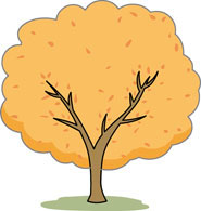 Bush orange tree clipart.