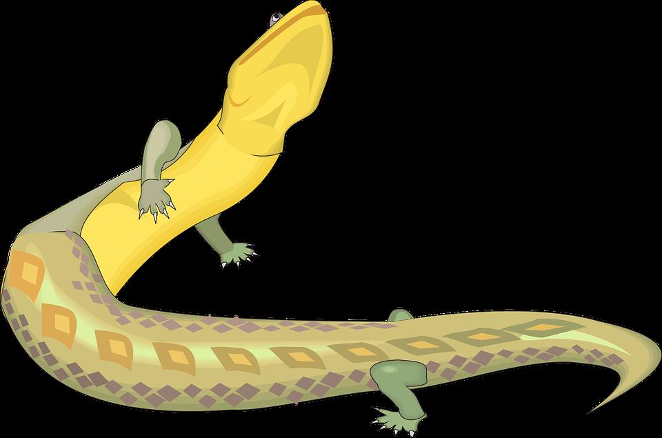 Free vector graphic: Lizard, Green, Yellow, Reptile.