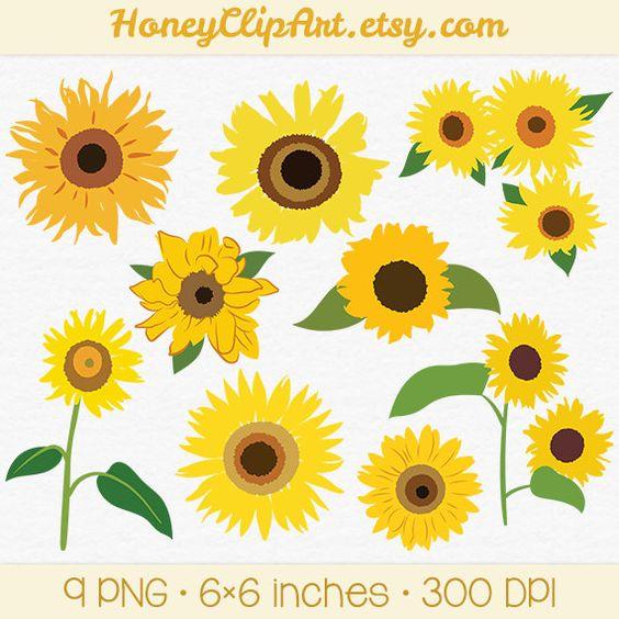 Digital Sunflower Clip Art, Hand Drawn Sun Flower Illustration.