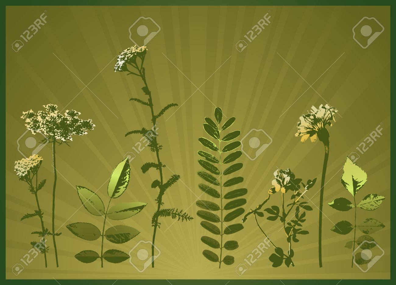 Modern, Season, Summer, Vector, Yellow, Spring, Floral, Style.
