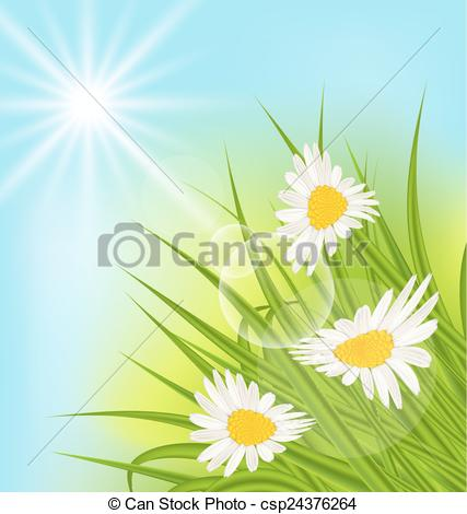 Clip Art Vector of Summer nature background with daisy, grass.