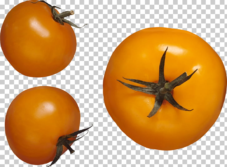 Pear tomato, Yellow Tomato PNG clipart.