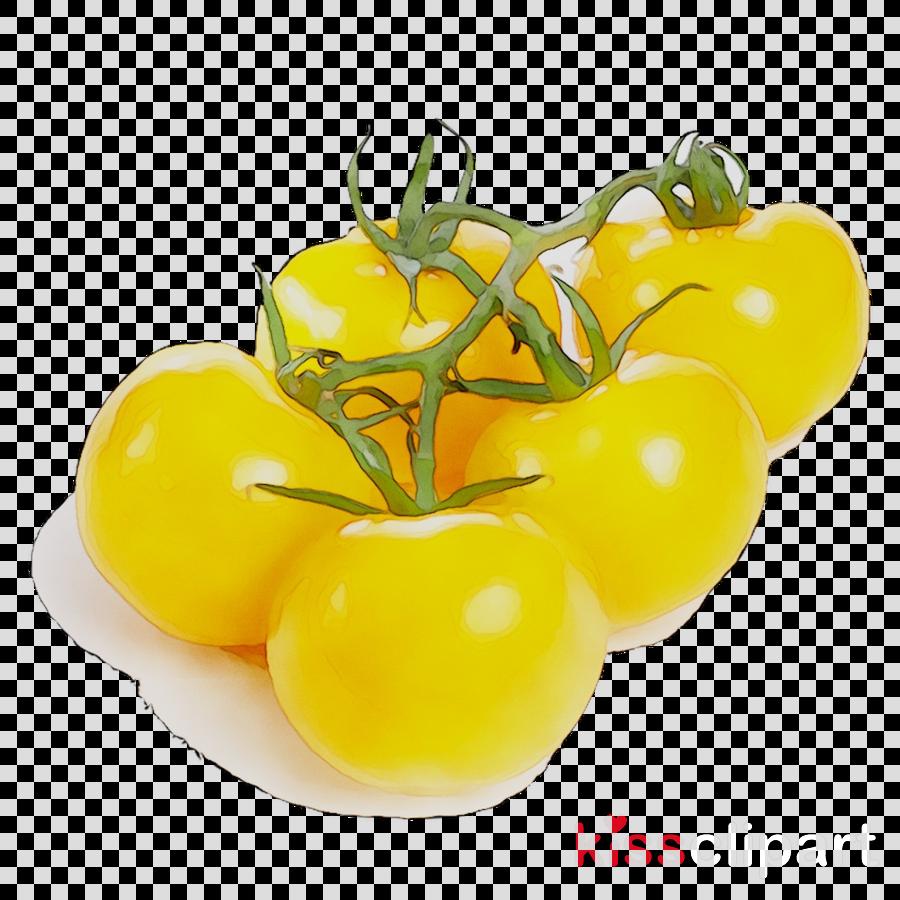 Tomato Cartoon clipart.