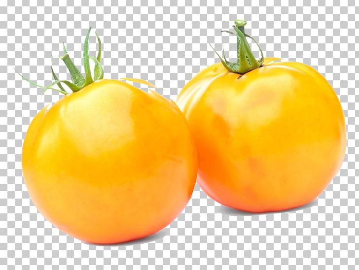 Cherry Tomato Pear Tomato Heirloom Tomato Concasse Tomato.