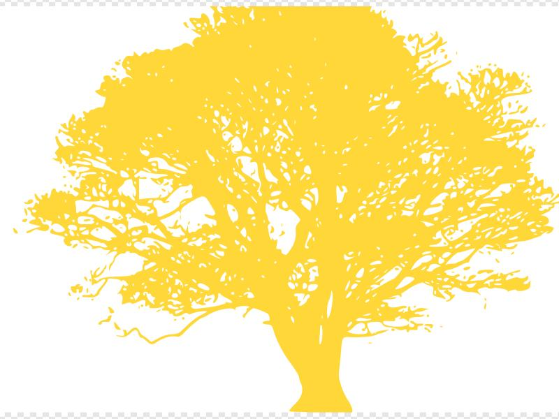 Tree, Yellow Silhouette, White Background Clip art, Icon and.