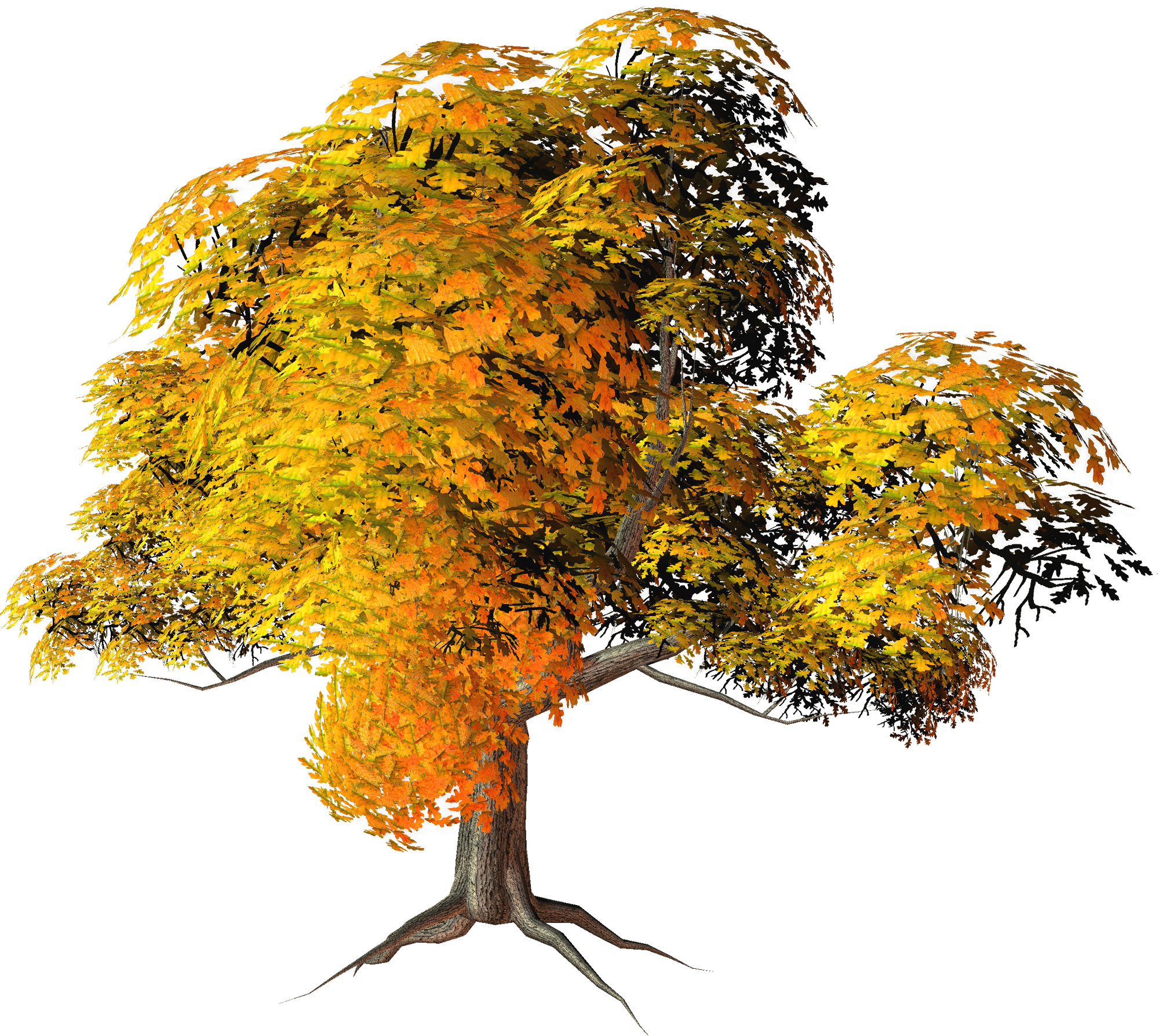 Large Yellow Fall Tree PNG Clipart.