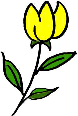 Showing post & media for Yellow tulip cartoon.