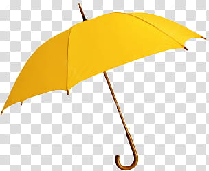 Autumn, yellow umbrella transparent background PNG clipart.