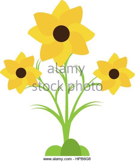 Stem Plant Nasturtium Stock Photos & Stem Plant Nasturtium Stock.