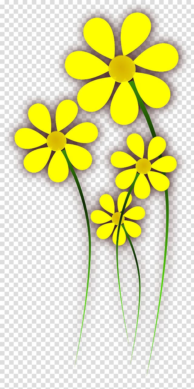 Flower Yellow , wild flowers transparent background PNG.