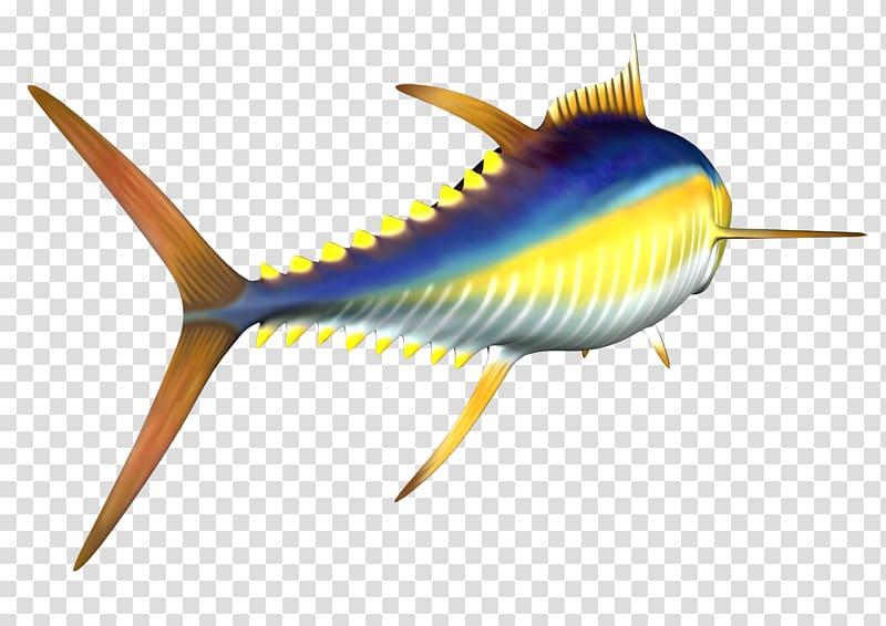 Tuna fish sandwich Yellowfin tuna , others transparent.